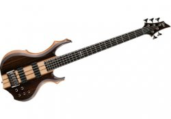LTD GUITARS F5E NS